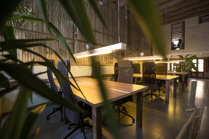 12 desks in one of the rooms at Jungle Coworking, full of plants, with top quality chairs.